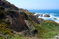 Bodega Head Cliffs and Ocean