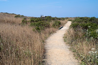 Coastal Prairie Trail at Bodega Head