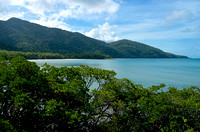 Daintree Rainforest at Cape Tribulation