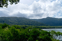 Daintree Rainforest Along Coast
