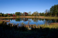 Meadow Lake at Morton Arboretum