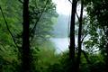 Lake Alimagnet Misty Morning
