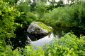 Pond and Mossy Rock