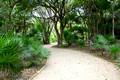 Tulum Trail