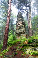 Castellated Mound in State Forest